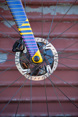 P5Disc Custom - Purple-Yellow-Blue-0532