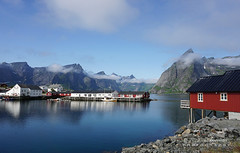 Hamnøy (NO) (♥ Annieta  very busy) Tags: annieta juli 2019 holiday vakantie vacances scandinavië camper reis voyage travel norway lofoten hamnoy zee sea bergen mountains huizen houses red rood cloud wolk allrightsreserved usingthispicturewithoutpermissionisillegal