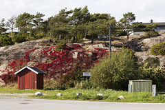 Utgårdskilen 2.17, Hvaler, Norway (Knut-Arve Simonsen) Tags: utgårdskilen vesterøy hvaler norge норвегия norway noruega norwegen norvegia norvège नॉर्वे 挪威 ノルウェー நோர்வே νορβηγία sydnorge sørnorge østlandet glomma oslofjorden østfold norden scandinavia скандинавия э́стфолл фре́дрикстад гло́мма ослофьорд vann hav benk gress tre hytte brygge water sea tree cottage pier banco de mar agua hierba árbol cabaña muelle wasser meer hütte acqua molo mare