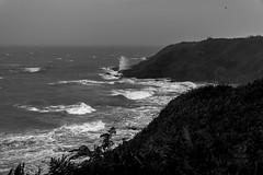 Storm in a tea cup (Gullivers adventures) Tags: storm coast waves lorenzo ocean sea mist haze moody shoreline bnw crashingwaves blancoynegro blackwhite