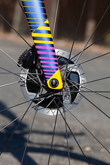 P5Disc Custom - Purple-Yellow-Blue-0538