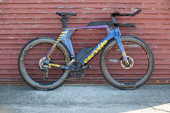 P5Disc Custom - Purple-Yellow-Blue-0528