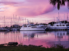 Pink Sky Reflected (mimsjodi) Tags: sky clouds river indianriverlagoon reflection water titusvillemarina titusvillefl sunrise twilight boat marina cellphone