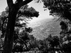 View from Santa Clotilde gardens (piotr_szymanek) Tags: boadella blackandwhite costabrava lloret water sea outdoor landscape garden santaclotilde 1k