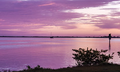 Pink Sky Reflected (mimsjodi) Tags: sky clouds river indianriverlagoon reflection water titusvillemarina titusvillefl sunrise twilight