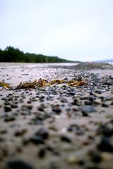 Steine und Strand (Anna Abendroth) Tags: rügen island ostsee insel balticsea