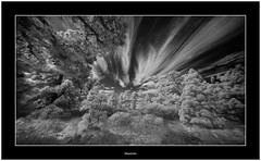 'Clouds of Hope' (Bartonio) Tags: bw canaryislands garafía ir islascanarias lapalma sonya7ir blanconegro infrared laowa1018mm45 modified pine sky