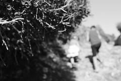 Spacer (kotmariusz) Tags: monochrom wakacje majorka dzieci spacer światło roślina