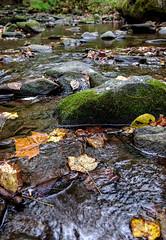 Morning Stream- Cades Cove Fuji xt10 18-55mm (ToddGraves2) Tags: