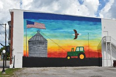 Oxford, Iowa wall art (stevelamb007) Tags: wallart oxford iowa rural d7200 nikon stevelamb