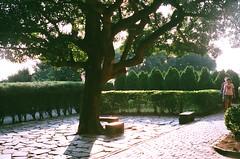 Sunny afternoon. (蒼白的路易斯) Tags: architecture historical 淡水紅毛城 film fujifilm yashicaelectro35gsn 底片攝影 底片
