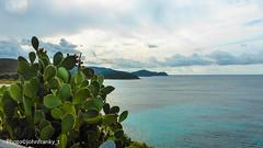 Sardegna-Italia (johnfranky_t) Tags: tz 40 panasonic johnfranky t panorama costa fichidindia golfo penisola mare nuvole lumix smeraldo
