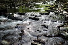 Smoky Mountain stream. Fuji xt10 (ToddGraves2) Tags: