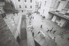 Looking Down (goodfella2459) Tags: nikonf4 ilfordpanfplus50 35mm blackandwhite film analog london history people toweroflondon buildings bwfp
