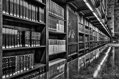 Books New York Public Library  BW (Susan Candelario) Tags: 5thavenue bw librarian manhattan monochromatic ny nyc newyork newyorkcity reading architectural architecture black book bookshelf books bookshelves bronze fifthavenue furniture knowledge librarians library literature mainbranch metal midtown mono monochrome newyorkcitypubliclibrary newyorkpubliclibrary novel nypl printing publiclibrary quietroom read research rosemainreadingroom roseroom sculpture shelf shelves stephenaschwarzmanbuilding study thenewyorkpubliclibrary white
