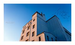 Dessau, Alte Papierfabrik - Old Paper Mill (alexander_winter@ymail.com) Tags: industrie dessau germany deutschland fabrik sachsenanhalt canoneos6d