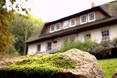 Moos, Stein und Haus (Anna Abendroth) Tags: rügen island ostsee insel balticsea