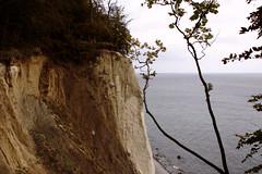 Steilküste (Anna Abendroth) Tags: rügen island ostsee insel balticsea
