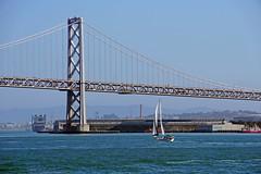 Bay Bridge - San Francisco, CA (SomePhotosTakenByMe) Tags: baybridge bridge brücke redandwhitefleet cruise bootstour bridge2bridge usa america amerika unitedstates california kalifornien sanfrancisco outdoor stadt city segelboot sailboat boat boot