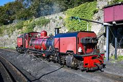 Simmering between runs (robmcrorie) Tags: nikon railway steam highland welsh beyer 138 garratt festiniog d850 caenarfan