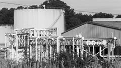 Petroleum Storage tank and associated Pipes (DayBreak.Images) Tags: suburban atlanta georgia dekalbcounty doraville petroleum tanks pipes canondslr tamron70300mmf456 lightroom bw