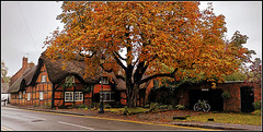 Autumnal Dunchurch (Jason 87030) Tags: house dwelling village uk pretty tree cycle bike bicylcle leaf leaves golden brown autumn fall season bricks local shot frame border old forge cottage windows thatch nice branch trunk colour colours weather
