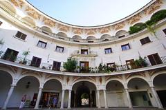 DSC04376 (諾雅爾菲) Tags: sonya7iii europe spain sevilla 歐洲 西班牙 塞維亞 plazadelcabildo