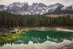 _DSC5520 (christian.joehl) Tags: karersee südtirol bergsee grüneswasser sturmschaden gebirge felsen wald kiefern spiegelung christianjoehl