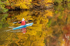 Paddling into Autumn (Karen_Chappell) Tags: travel ottawa ontario fall autumn reflection reflections canal water rideaucanal canada canonef24105mmf4lisusm orange green yellow red blue colourful colours colour color people person kayak rowing paddling nature trees