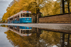 Heading into Autumn (Fredrik Lindedal) Tags: autumn colorful yellow orange trees tram train reflection reflections streetview street gothenburg göteborg season changofcolors city cityscape cityview colors lindedal