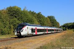 Au calme (Lion de Belfort) Tags: train chemin de fer ligne 4 l4 sncf ter grand est genevreuille b 85000 85029 l coradia liner alstom carmillon lure