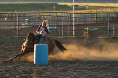 Barrel race in Bryce (Alex Borst) Tags: amerika america usa utah bryce rodeo barrel race racing horse dust sun
