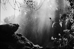 Polska Skakavitsa waterfall (vladixp) Tags: ilford fp4 fp4plus fp4plus250 ei250 250 xtol stock 9min 20c praktica mtl5 mc flektogon 24 35 hoya hmc k2 pf7250u 3600dpi 35mm yellowfilter filmscan 35mmfilm film bw bwfilm filmphotography negative scanned bulgaria bulgarien bulgarie българия zemen земен polska skakavitsa waterfall polskaskakavitsa