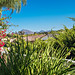 16515 Sambroso Pl San Diego CA-044-052-046-MLS_Size