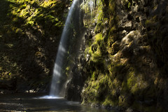 "Fall Creek Falls, Oregon (Bonnie Moreland (free images)) Tags: oregon hiking waterfalls cliff rocks moss sunbeams water fallcreekfalls shadows basin pool ""sunday lights"""