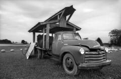 Kodak 2366 developer test - D76 (Leslie Lazenby) Tags: kodak 2366 eastman fpp76 d76 olympus 35mm iso6 bw 24mm zuiko rimelspach fremont ohio filmphotographypodcast project fpp