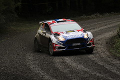 Adrien Fourmaux & Renaud Jamoul | Equipe du France FFSA | Ford Fiesta R5 (Crackers250) Tags: walesrallygb worldrallychampionship myherin 2019 rally rallying rallycar motorsport wales stage gravel mud ss14 forest wrc2 ford fiesta fiestar5 adrienfourmaux renaudjamoul equipedufranceffsa