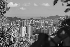 Hong Kong in Black and White (Geraint Rowland Photography) Tags: hk bw blackandwhite blancoynegro city nature landscapes landscapeimages hongkonginblackandwhite wwwgeraintrowlandcouk fullframe skyscrapers development buildings modernliving lookingdown islands geraintrowlandinhongkong