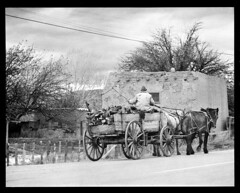 4x5-088-58 (ndpa / s. lundeen, archivist) Tags: nick dewolf nickdewolf bw blackwhite photographbynickdewolf 1957 1950s film 4x5 largeformat sheetfilm monochrome blackandwhite northern newmexico northernnewmexico southwest southwestern west western us unitedstates santafe taos rural high desert village town road dirtroad local people horse horses horsedrawn cart wagon man reins whip late1950s