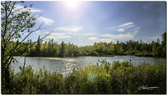 OCTOBER 2019 _285_NGM_3284-1-222 (Nick and Karen Munroe) Tags: water waterfront waterscape ponds rivers river streams stream caledon northcaledon landscape landscapes sunlight sunburst sun sunshine starburst forest tree trees woods hike trail hiking forests wood natural fall autumn fallsplendor fallcolours karenick23 karenick karenandnickmunroe karenandnick munroe karenmunroe karen nickandkaren nickandkarenmunroe nick nickmunroe munroenick munroedesigns photography munroephotoghrpahy munroedesignsphotography nature brampton bramptonontario ontario ontariocanada outdoors canada d750 nikond750 nikon colour colours color colors nikon2470f28 2470 2470f28 nikon2470 nikonf28 f28