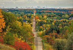 Toronto From A Distance-Fall Colours (JACK TOME) Tags: colours road toronto ontario trees drive