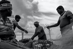 Manapad, 2019 (bmahesh) Tags: cwc cwc752 chennaiweekendclickers manapad tamilnadu india people life street fishing fishermen fishingnet blackandwhite canon sigma canoneos5dmarkiii sigma35mmf14art