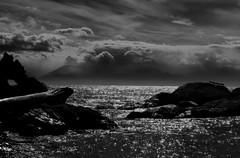 Victoria seascape looking towards Olympic mountains, Washington state (PhotonArchive) Tags: victoria britishcolumbia 6d canon seascape waves monochrome backlit dramatic salishsea olympicmountains northwest blackandwhite seagull birds silouette
