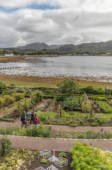 Formal Gardens at Inverewe Gardens, Loch Ewe, Wester Ross. (Scotland by NJC.) Tags: coastline 海岸线 litoral côte küste linea costiera 海岸線 해안선 seashore coast shore seaboard seaside beach strand hill تَلّ colina 小山 brdo kopec bakke forhøjning landskabet heuvel mäki colline hügel λόφοσ collina 丘 언덕 ås wzgórze village قَرْيَة vila 村庄 selo vesnice landsby деревня by หมู่บ้าน köy село làng flower زَهْرَة flor 花 cvijet květina blomst blume λουλούδι fiore 꽃 inverewegardens lochewe poolewe westerross scotland