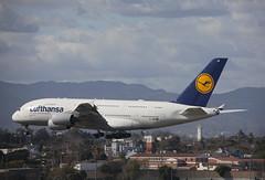 D-AIMI Airbus A380-841 Lufthansa (corkspotter / Paul Daly) Tags: daimi airbus a380841 a388 72 l4j asce 3c65a9 dlh lh lufthansa 2011 fwwsr 20120516 klax lax los angeles