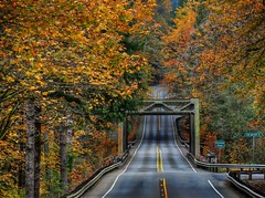 Quilcene Bridge & Hwy 101 (George Stenberg Photography) Tags: washingtonstate pacificnorthwest autumn bridge fallcolors highway