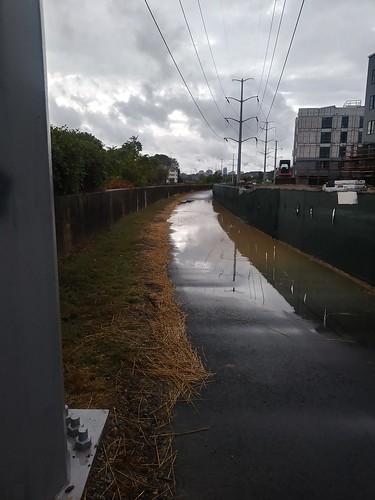 Four Mile Run trail new asphalt - huge pool of water ©  Michael Neubert
