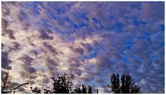Amanecer dinámico (Claudio Andrés García) Tags: clouds cielo sky nubes naturaleza nature ciudad city amanecer sunrise primavera springs fotografía photography cybershot