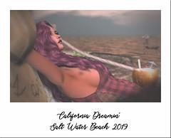 California Dreamin' (riverboucher) Tags: sl secondlife firestorm yasum legacy tmp laq magika beach virtual ocean summer