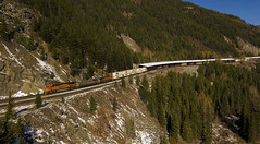A New View at Singleshot (Trevor Sokolan) Tags: essex montana unitedstatesofamerica singleshot drone mavic air stack intermodal freight es44c4 ge generalelectric diesel locomotive bnsf snowshed marias hiline railway railroad railfan rail railfanning curve forest mountains trains train trainspotting tracks